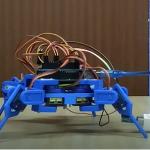 Probando un Robot Araña