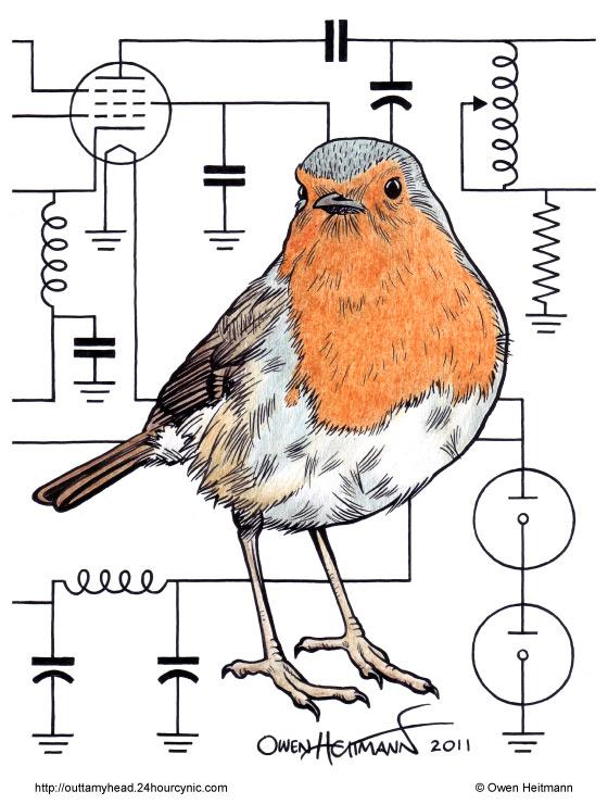 Pájaro con esquema eléctrico
