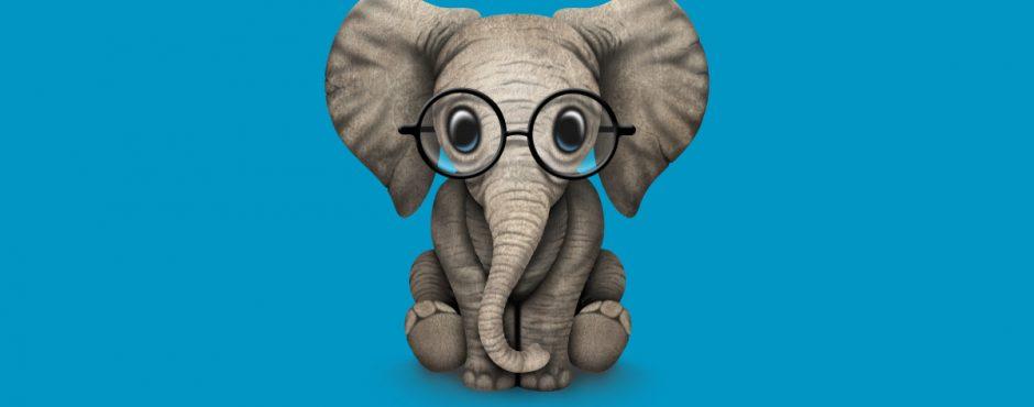 Elefantito con gafas